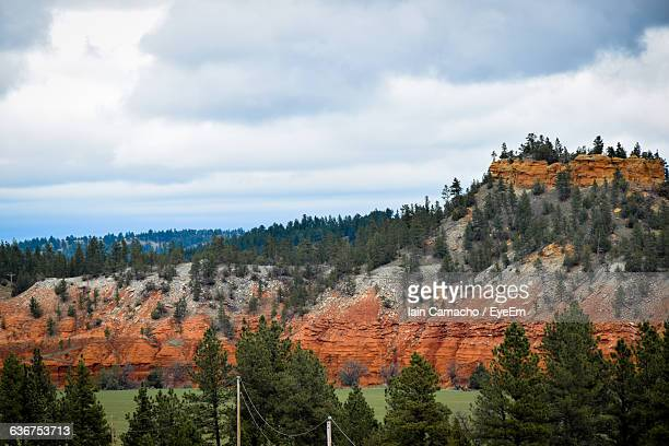 trees growing on rock formations against cloudy sky at black hills - black hills stock pictures, royalty-free photos & images