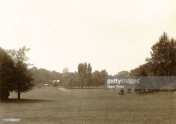 Trees in a park, presumably in Laeken Brussel Belgium, Anonymous, c. 1900 - c. 1910