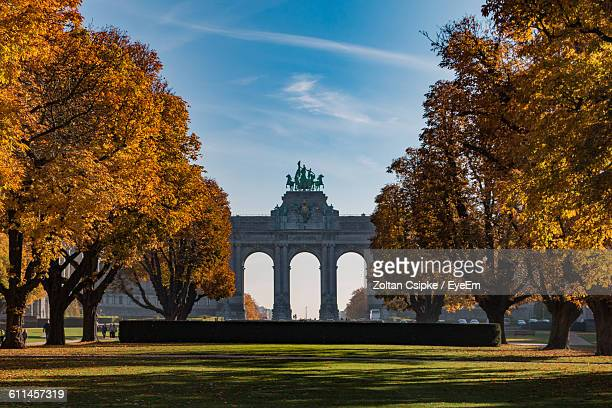 Trees In Cinquantenaire