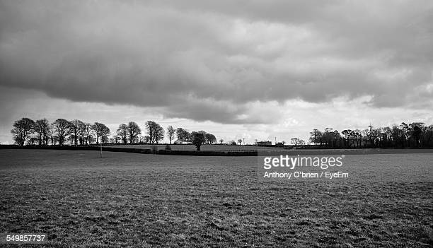 trees in distance against cloudy sky at landscape - fermoy stock photos and pictures