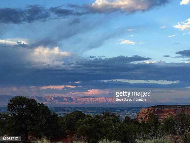 trees in field against cloudy sky at sunset - colorado national monument stock-fotos und bilder