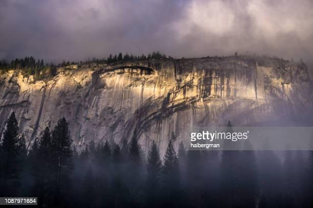 Trees in Fog Beneath Cliff Face in Yosemite