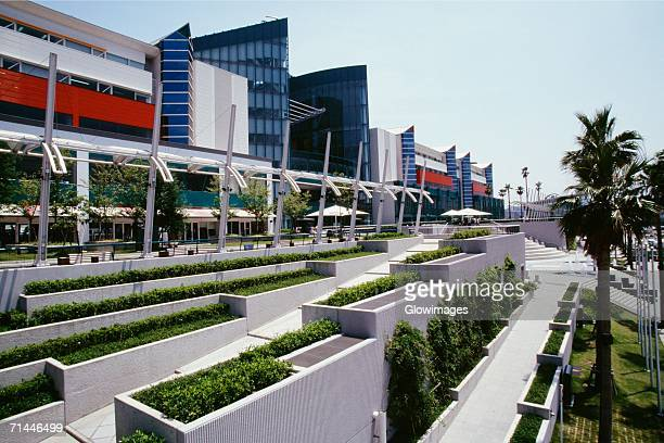 Trees in front of a building, Asia-Pacific Trade Center, Osaka, Japan