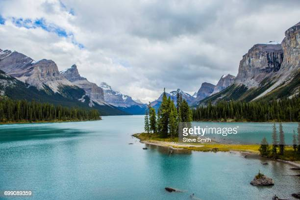 Trees in mountain lake