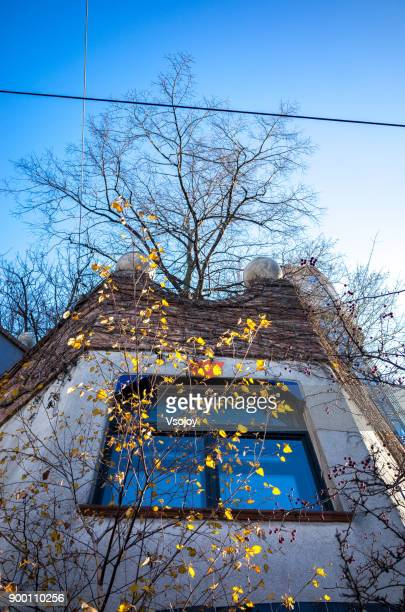 trees in the early winter at the hundertwasser house, vienna, austria - vsojoy stock pictures, royalty-free photos & images