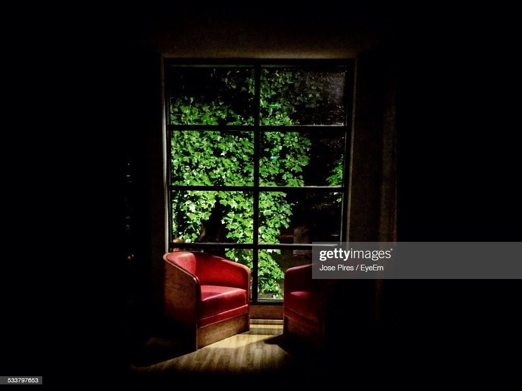 Trees In Yard Seen Through Glass Window At Home : Foto stock
