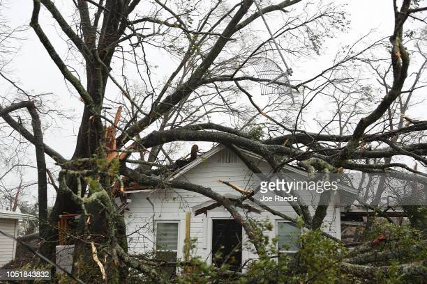 Trees lay on the top of a home after hurricane Michael passed through the area on October 10 2018 in Panama City Florida The hurricane hit the...