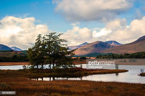 Trees, Loch and mountains