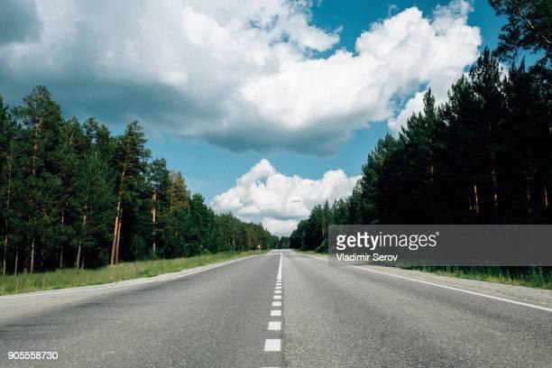 trees near distant road - alles hinter sich lassen stock-fotos und bilder