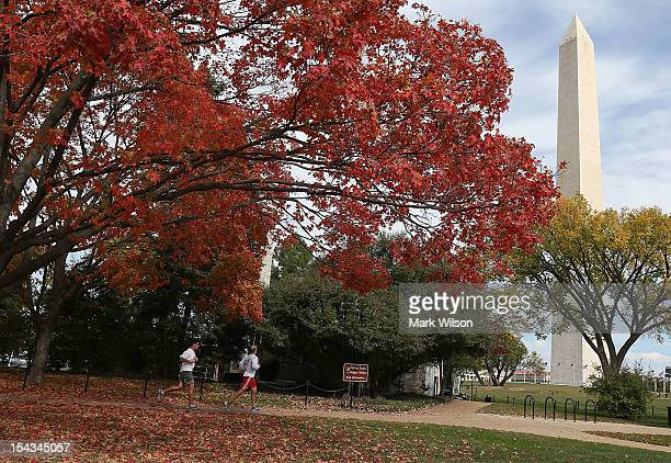 Trees near full bloom near the Washington Monument on the National Mall on October 18 2012 in Washington DC Foliage in the Washington area is almost...