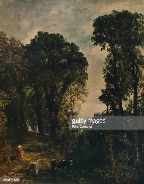 Trees Near Hampstead Church' . Held by the Tate Modern, London. From International Art: Past and Present by Alfred Yockney. [Virtue & Company,...