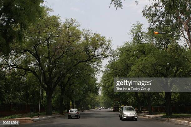 Trees on Akbar road New Delhi