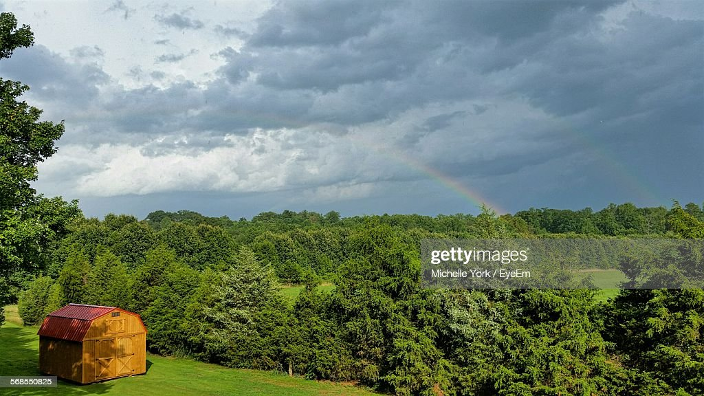Trees On Field Against Cloudy Sky : Stock Photo