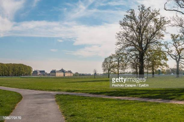 trees on field against sky - chantilly picardy stock photos and pictures