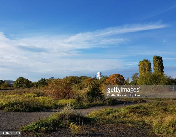 trees on field against sky - tempelhof airport stock pictures, royalty-free photos & images