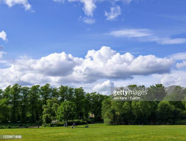 trees on field against sky - glasgow stock pictures, royalty-free photos & images