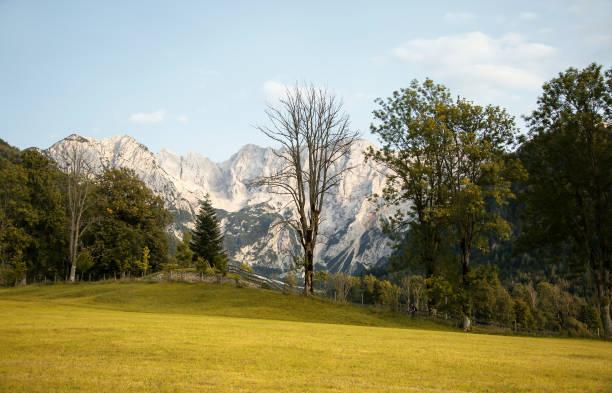 Trees on field against sky,Zagorje ob Savi,Slovenia