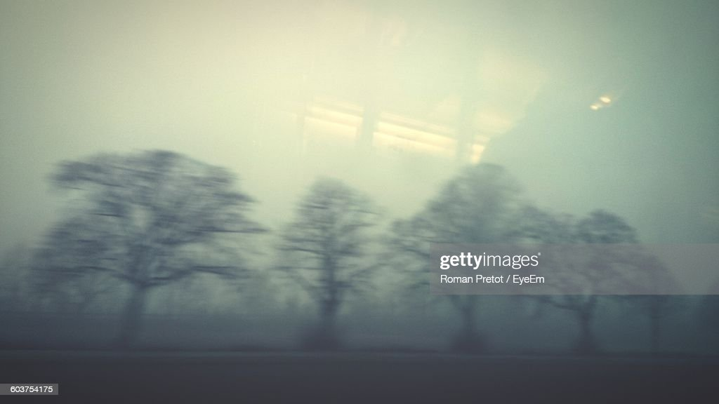 Trees On Field In Foggy Weather Seen From Vehicle Glass Window : Stock Photo