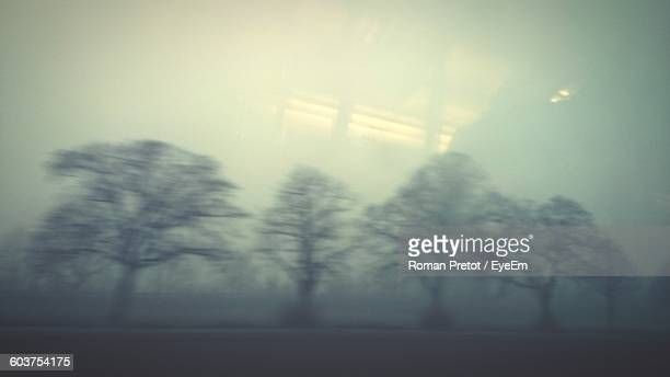 Trees On Field In Foggy Weather Seen From Vehicle Glass Window