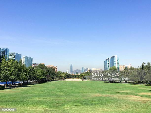 trees on grass in park against sky - santiago chile stock pictures, royalty-free photos & images