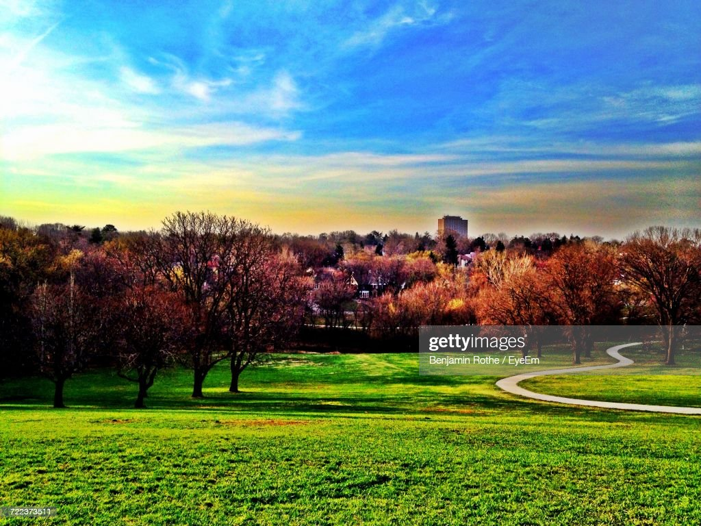 Benjamin Rothe trees on grassy field against cloudy sky stock photo getty images