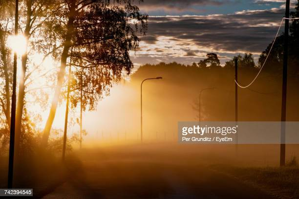 trees on landscape against sky during sunset - per grunditz stock pictures, royalty-free photos & images