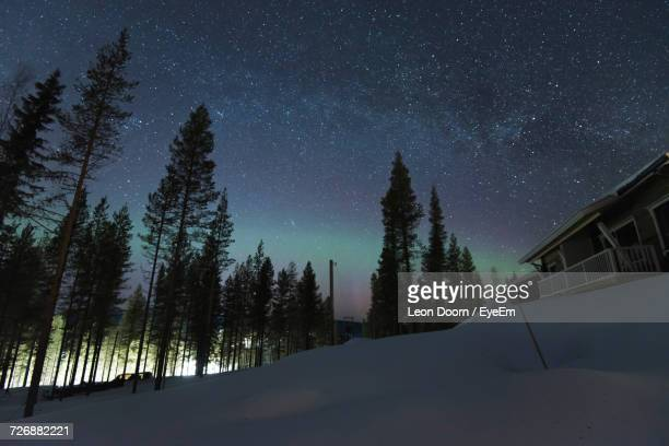 Trees On Snow Covered Landscape Against Sky At Night