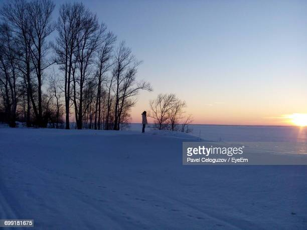 trees on snow covered landscape during sunset - nizhny novgorod oblast stock photos and pictures