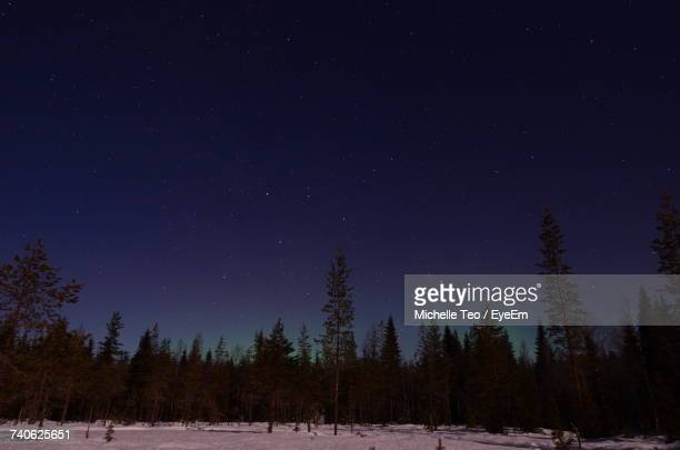 Trees On Snow Field Against Sky At Night