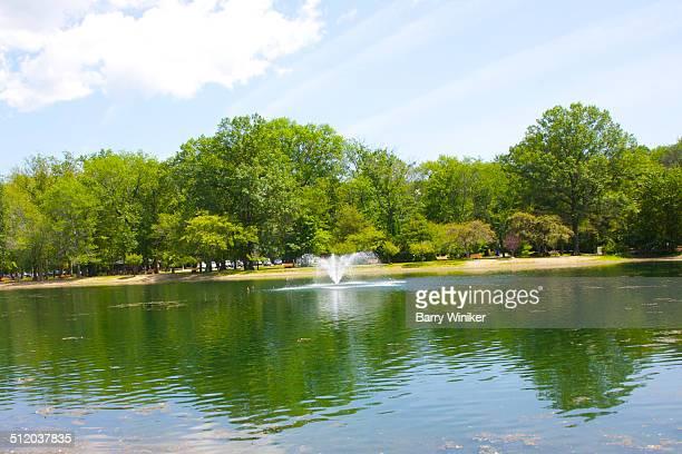 trees reflected in water near ridgewood - ridgewood new jersey imagens e fotografias de stock