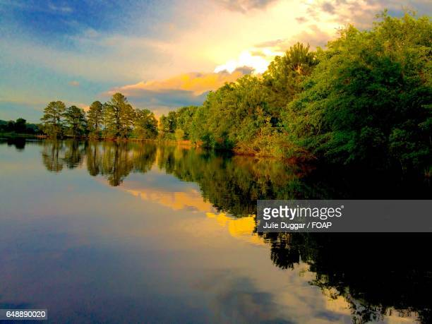 Trees reflecting on lake during sunset