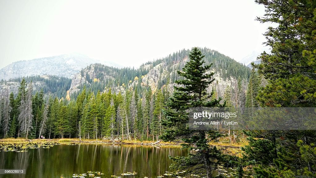 Trees Reflection In Lake And Mountains Against Sky : Stock Photo