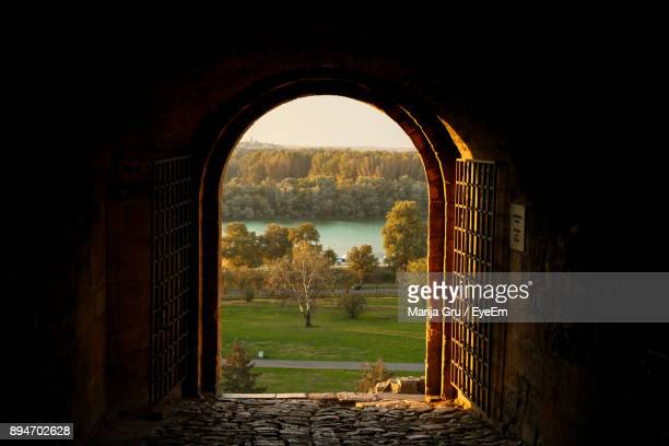 trees seen through arch - arch stock pictures, royalty-free photos & images