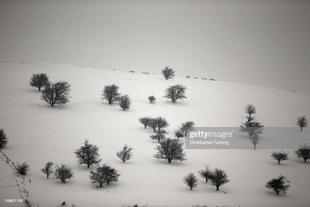 Trees sit starkly against the snow covered hills in the Peak District on January 21, 2013 in Buxton, United Kingdom. The Met Office has issued a red weather warning for parts of the Uk and advising against all non-essential travel as up to 30cm of snow is expected to fall in some areas today. The adverse weather has closed nearly 5,000 schools and caused many airports to cancel flights.