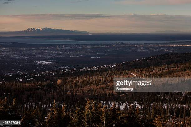 Trees stand at Chugach State Park in Anchorage Alaska US on Wednesday Nov 5 2014 Voters in Anchorage on Nov 4 approved a referendum that voids a...
