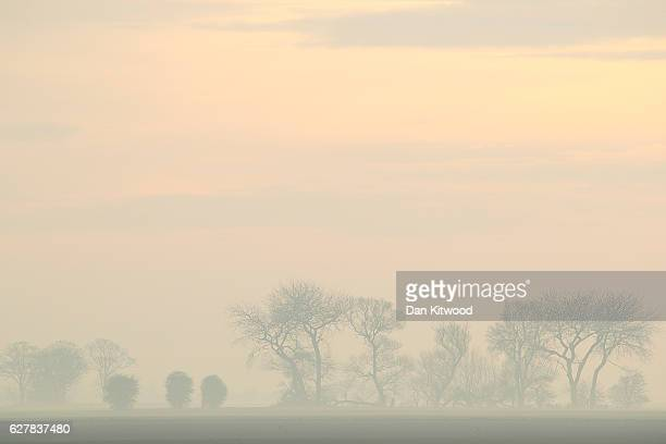 Trees stand between fields in the fog on December 5 2016 near Boston England