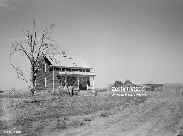 Trees Stripped Bare by Drought and Grasshopper Plague on Farm near Saint Anthony North Dakota USA Arthur Rothstein Farm Security Administration July...