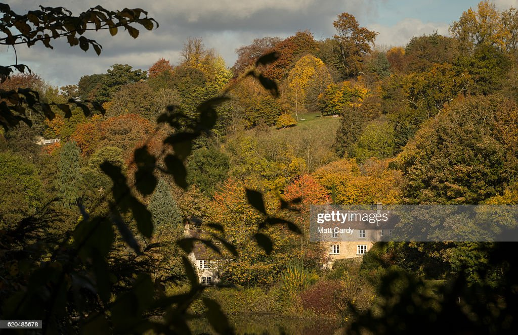 Autumn Colours Reach Their Peak In The UK : News Photo