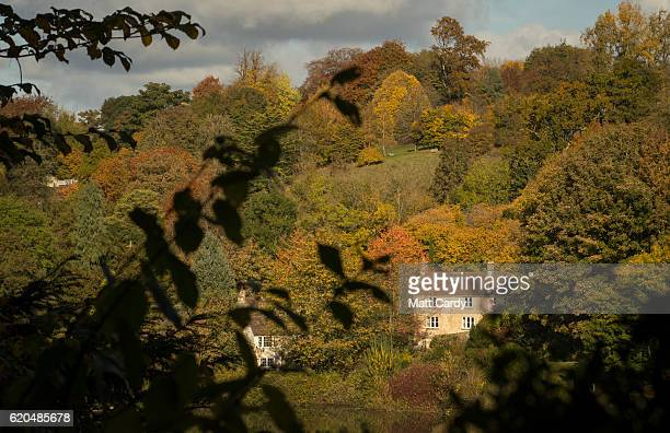 Trees surrounding the National Trust's Prior Park Landscape Garden display their autumn colours on November 2 2016 in Bath England After one of the...