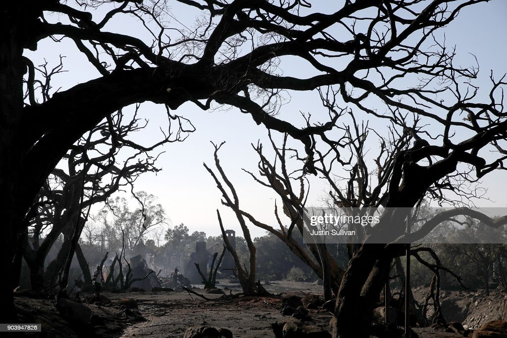 Trees that were burned by a wildfire stand in an area that full of debris and mud following a mudslide on January 11, 2018 in Montecito, California. 17 people have died and hundreds hundreds of homes have been destroyed or damaged after massive mudslides crashed through Montecito, California early Tuesday morning.