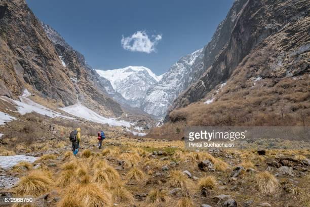 trekkers heading toward machhapuchhre base camp, annapurna region, nepal - machapuchare stock photos and pictures