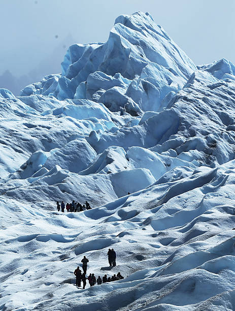 ARG: Global Warming Impacts Patagonia's Massive Glaciers