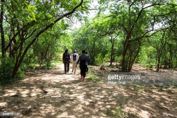 trekkers walking in asola bhatti wildlife sanctuary - faridabad stock pictures, royalty-free photos & images