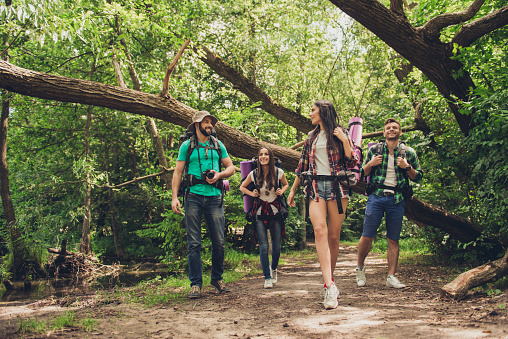 Trekking, camping and wild life concept. Two couples of friends are walking in the sunny spring woods, talking and laughing, all are excited and anxious, jungle trails 935648828