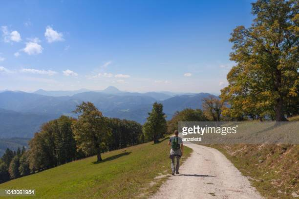 trekking in the austrian alps - sankt poelten stock pictures, royalty-free photos & images