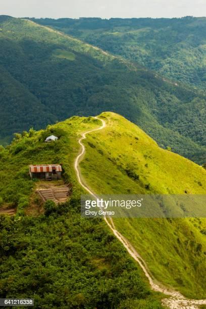 Trekking in the hills