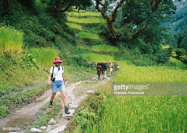 trekking on the trail to birethanti - pokhara stock pictures, royalty-free photos & images