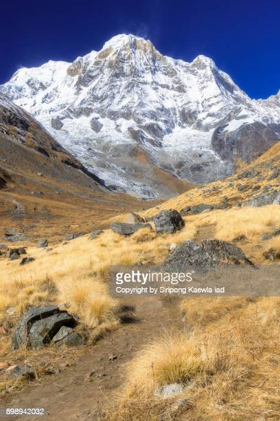 trekking trail to the annapurna base camp (abc). - copyright by siripong kaewla iad stock photos and pictures