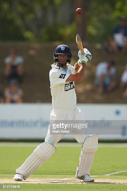 Trent Copeland of the Blues bats during day four of the Sheffield Shield match between New South Wales and South Australia at Coffs Harbour...