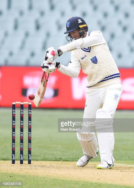 Trent Copeland of the Blues bats during the Sheffield Shield match between South Australia and New South Wales at Adelaide Oval on October 17, 2018...